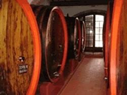В Египте обнаружена винодельня времен Византии